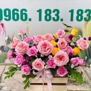 hoa giỏ 05