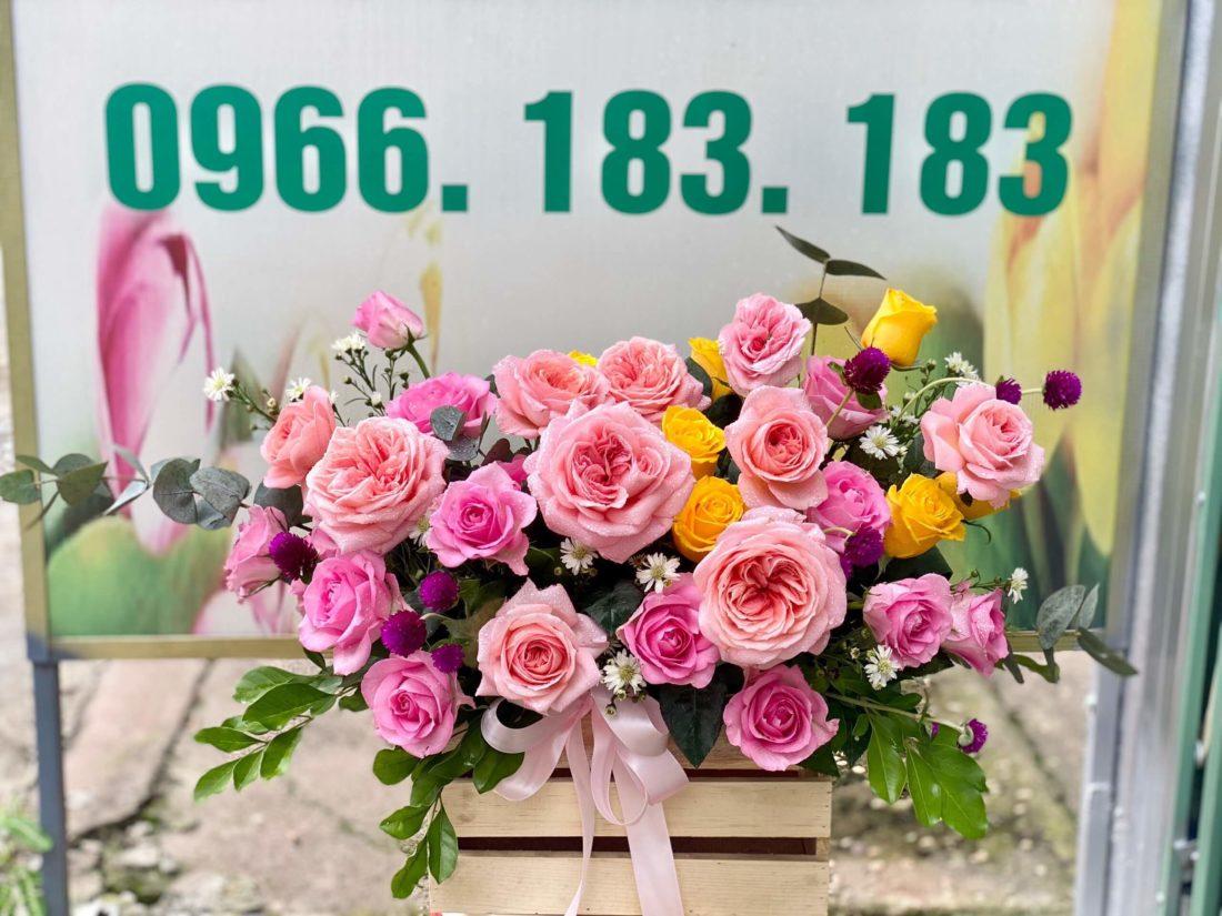 shop hoa gần nhất tại Trà Vinh